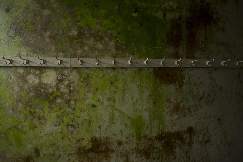 Coat hooks on a mouldy wall.