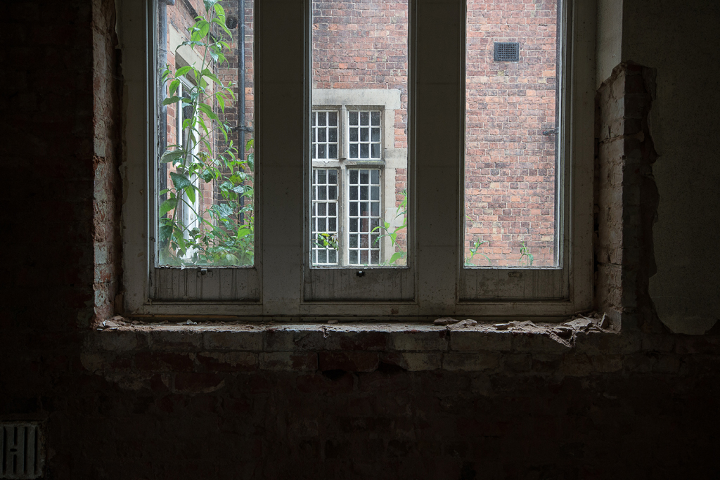 Bricks and window.