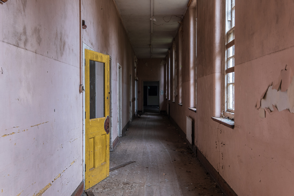 Cardiff City Asylum, Whitchurch - January 2019